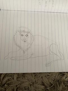 Poppy's wonderful lion drawing!