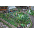 Farm and allotments
