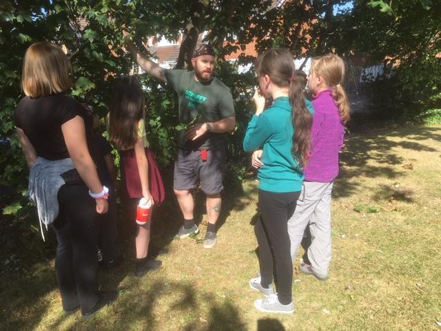 Tree Identification - essential Skills