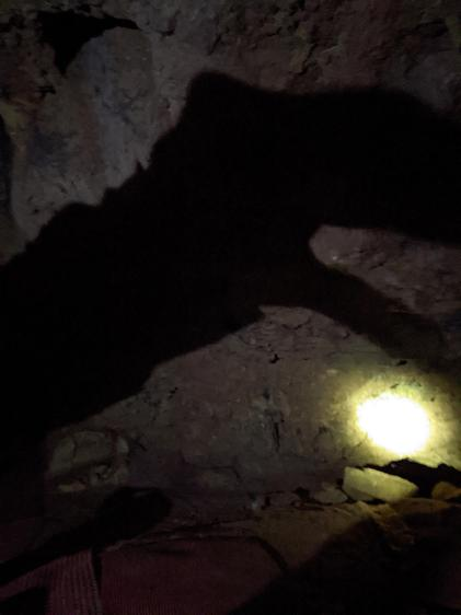 Making hand shadows in the light from our headlamps