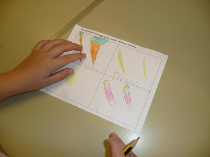We drew pictures of the vegetables.