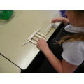 Next, we wove art straws to represent 'wattle'.