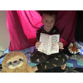 Alfie enjoying a book in his den!