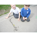 We used natural materials to make pictures.