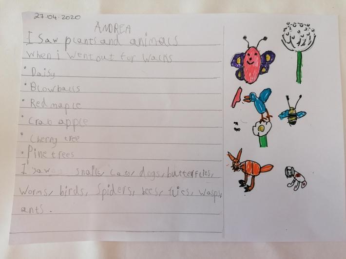 Andrea - Mr Riley's class
