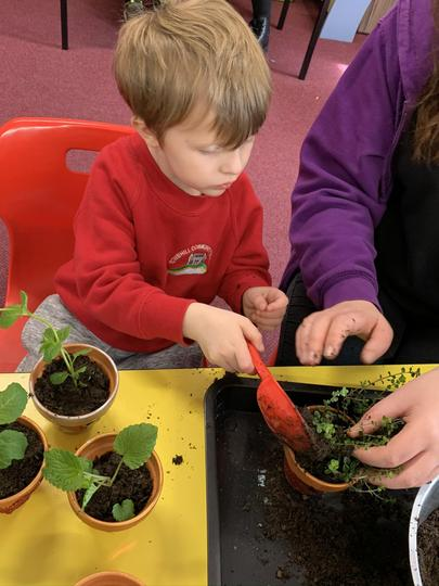 Planting flowers for Mothers Day