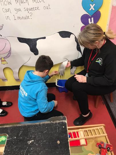 Learning about milk production