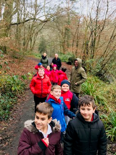 We love woodland walks.