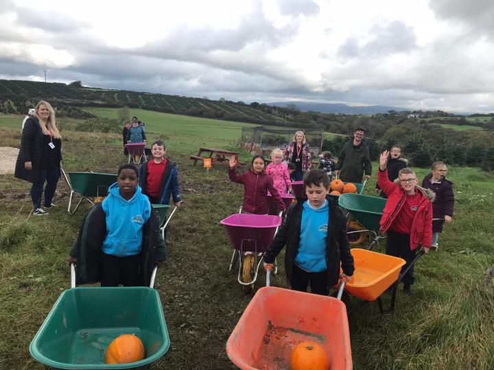 Pumpkin Picking in the Poundffald Farm
