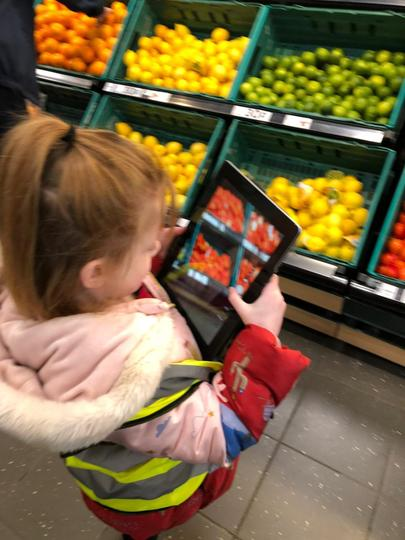 How does fruit get to our supermarkets?