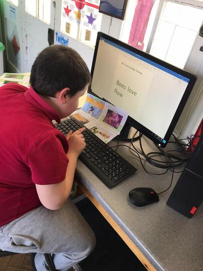 Writing a 'Bee' fact file using office HWB