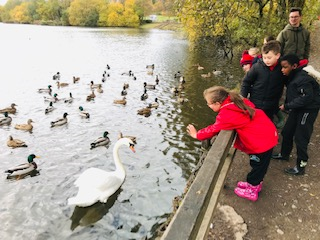 Feeding the ducks is fun!