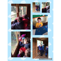 Bird watching and applying multiplication knowledge