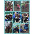 Enjoying climbing trees during Forest School
