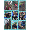 Enjoying climbing trees and brightening up the outside area