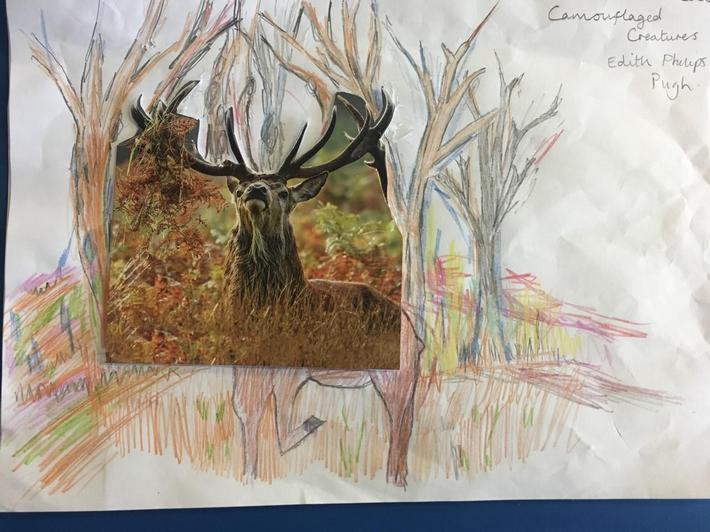 Wrens drawing camouflaged surroundings