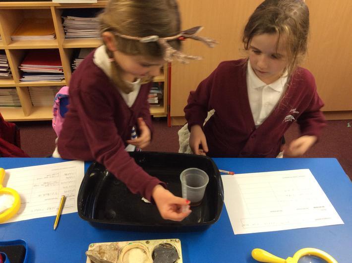 Investigating reaction with acid- vinegar