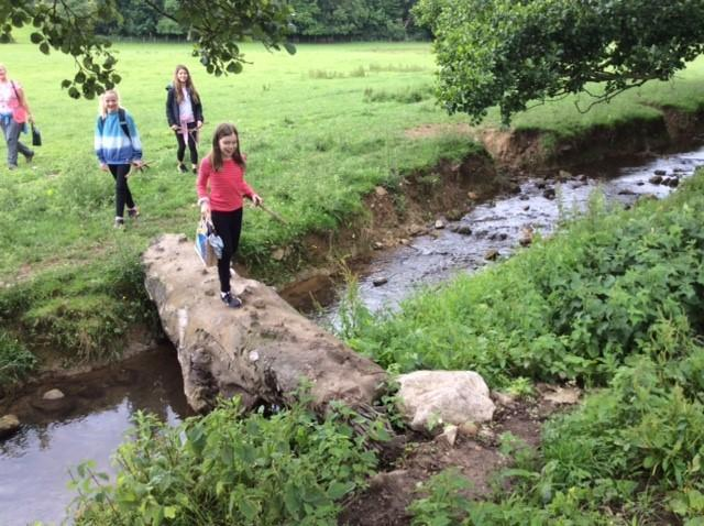 Crossing the brook