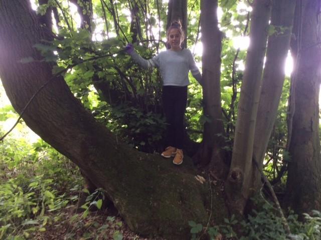 Exploring in Bwlytai woods