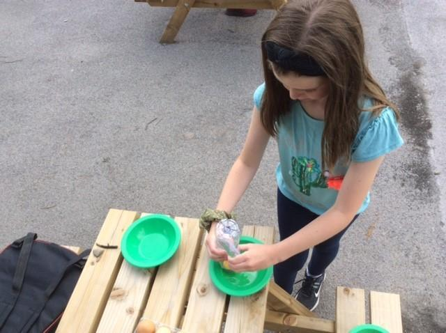 Egg white and yolk experiment