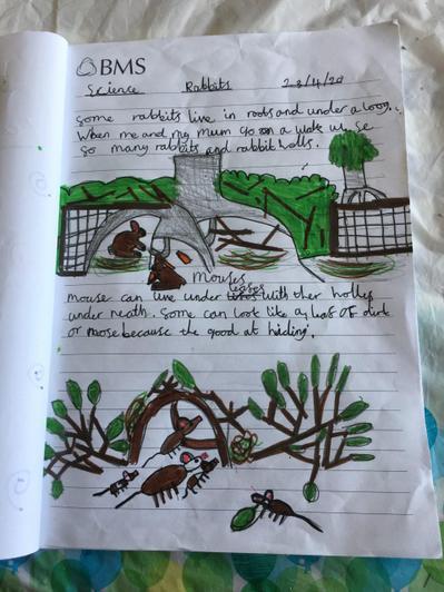 Exploring Habitats