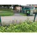 Our wild bee garden