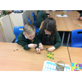 We have investigated money this week.