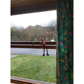 Buddy the Elf appeared this morning!