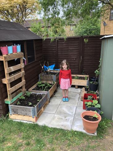 R and P have been growing vegetables from seed