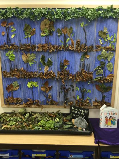 Natural resources were collected by year 1 children to create an autumn picture.