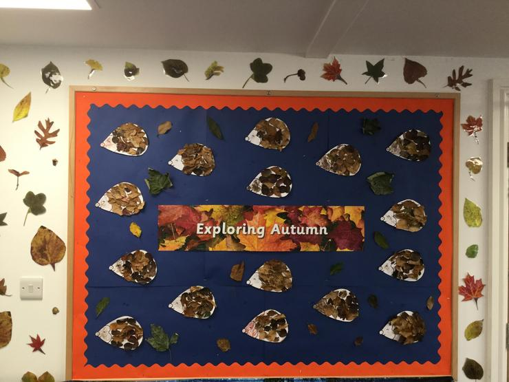 Tiger Cubs collected autumn leaves for their hedgehog art.
