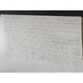 Super use of sentence starters Alfie :)