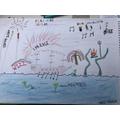 Signor Scorcini's Firework display - Harry H