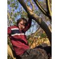 Enjoying the sunshine and tree climbing.