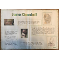 Abi's poster about Jane Goodall
