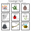 Try a Scavenger hunt
