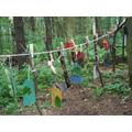 Peg items on the washing line e.g. leaves