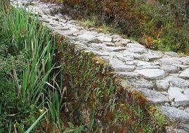 The remains of an Ancient Inca road.