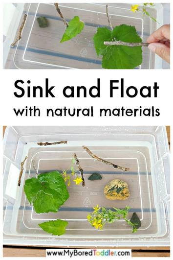 Natural garden items to see if they sink or float