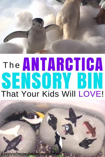 Antartica Sensory Exploration