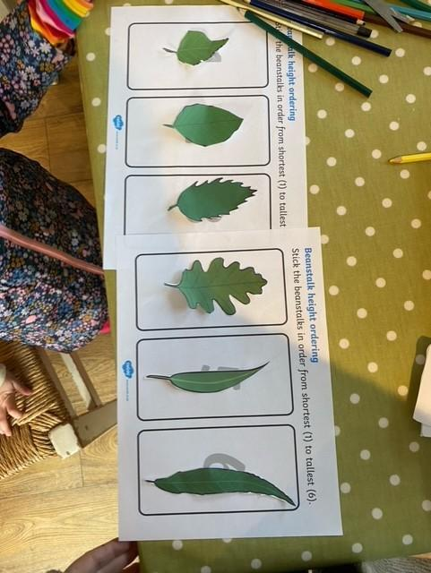 Lily has been busy with her maths work