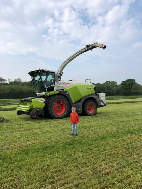 Harvesting silage in real life!