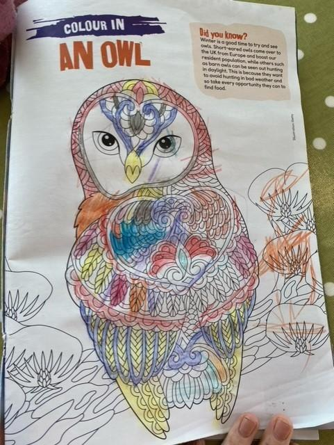 Careful colouring, well done Lily