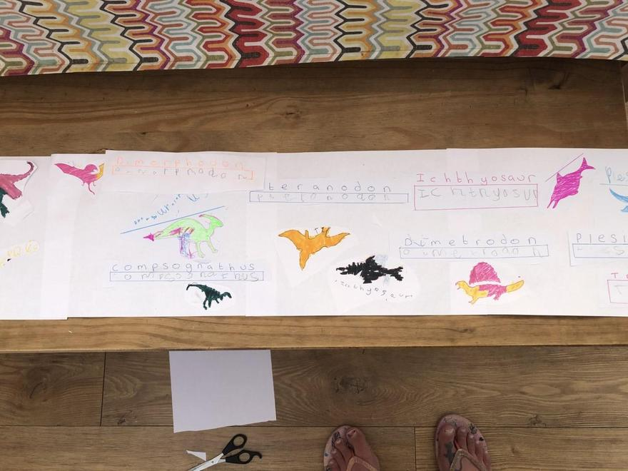 Lots of carefully drawn dinosaur pictures