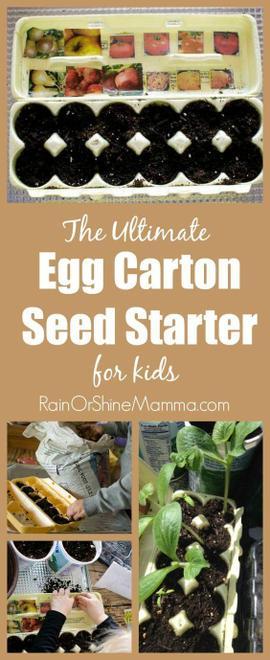 egg carton planter