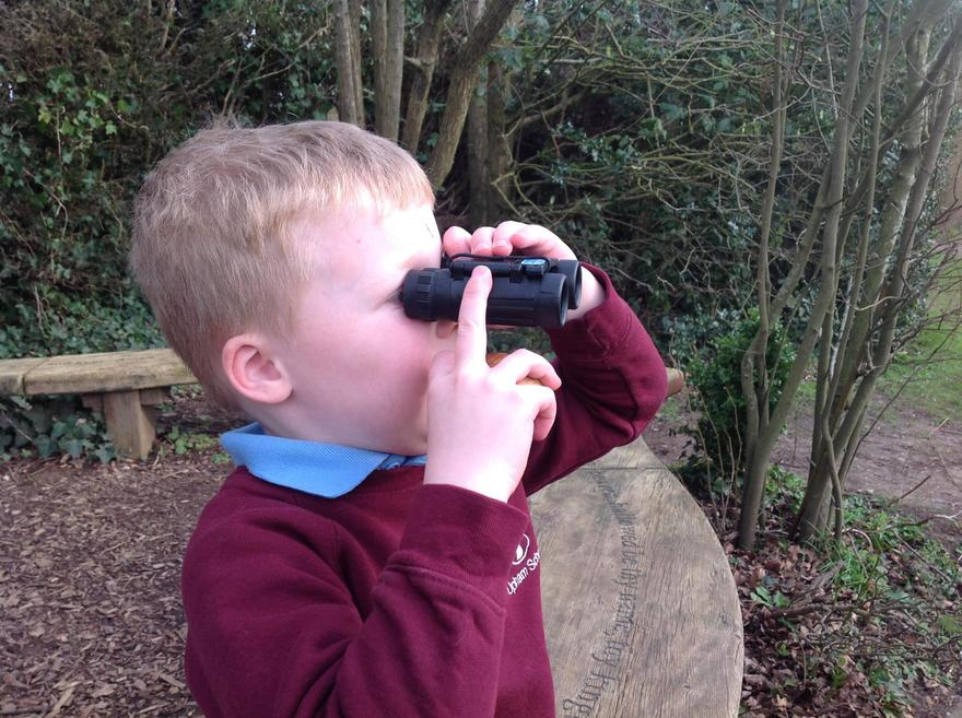 Bird spotting for the RSPB Big Bird Watch survey