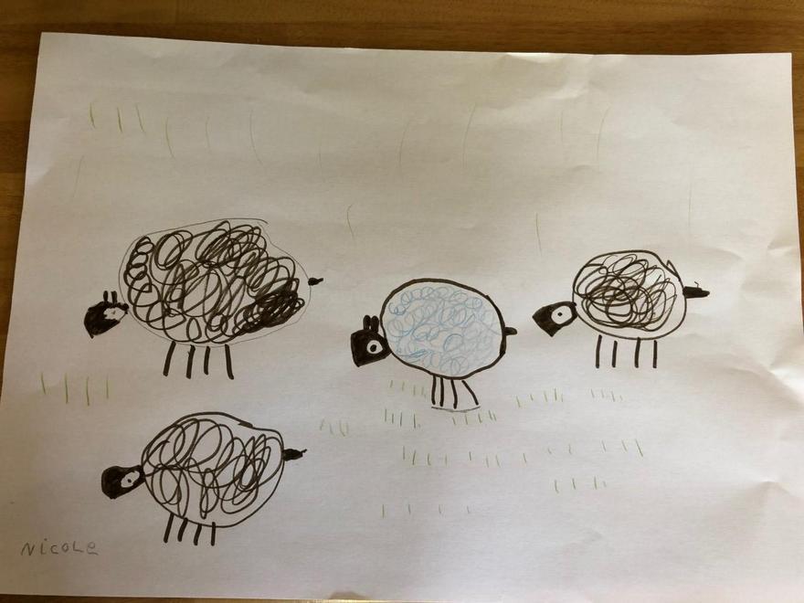 Nicole's beautifully drawn flock of sheep
