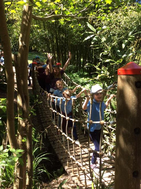 A school trip to Hilliers Gardens to learn about plant growth.