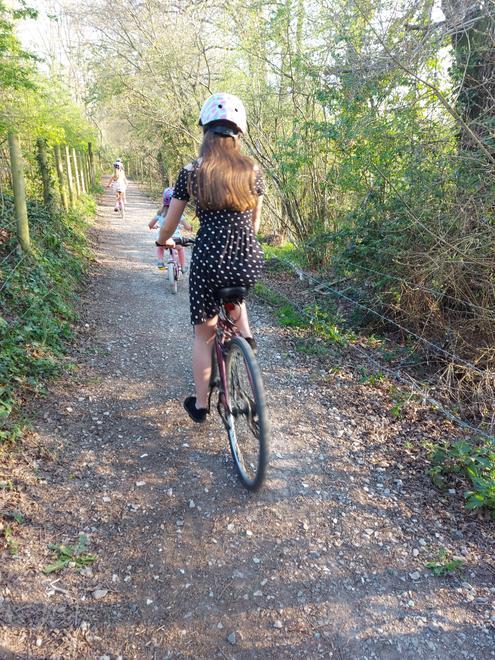Honey on the bike ride.
