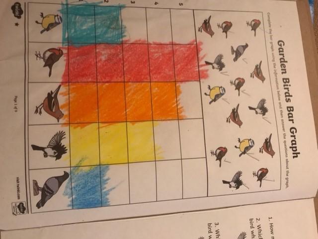 Jacob's bird watch graph